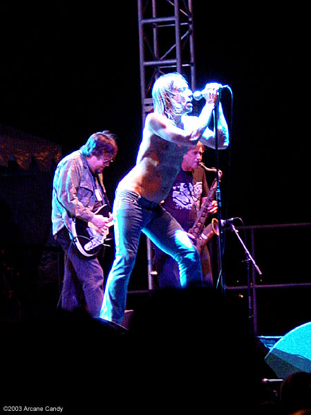 All Tomorrow's Parties 2003 - The Stooges.