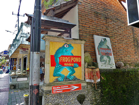 Welcome to the Frog Pond Inn in Ubud, Bali.