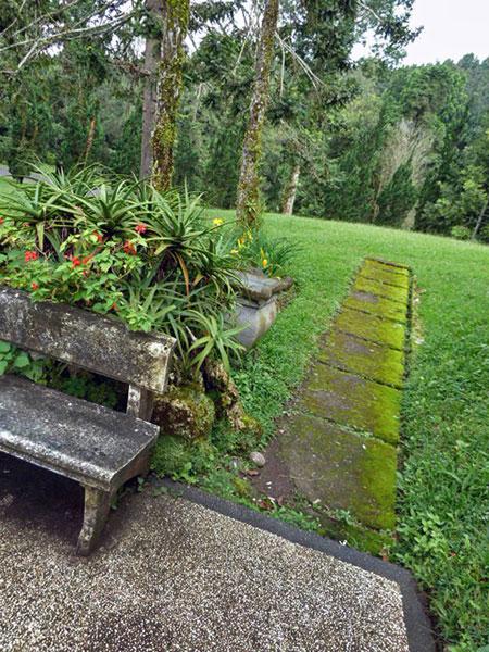 The path to nowhere. Bali Botanical Gardens in Candikuning, Bali.