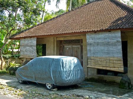 Car pest control near Ubud, Bali.