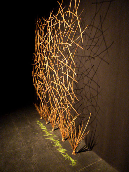 An assemblage of twigs in the Black Box at Fort Canning, Singapore.