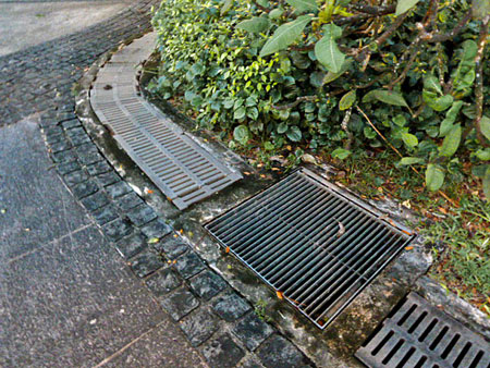 Frogs croak up a big drone down inside a drainage culvert in Fort Canning, Singapore.
