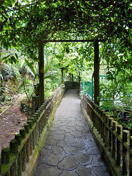 A shady, scenic walk at Taman Rama Rama in Kuala Lumpur, Malaysia.