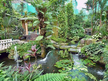 A lovely overview of Taman Rama Rama in Kuala Lumpur, Malaysia.