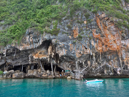 Workers mine bird nests for Chinese medicinal soup in Viking Cave on Ko Phi Phi Leh, Thailand.