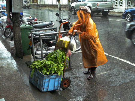 Even an intense downpour can't stop the Bean Lady from strutting her stuff in Phuket Town, Thailand.