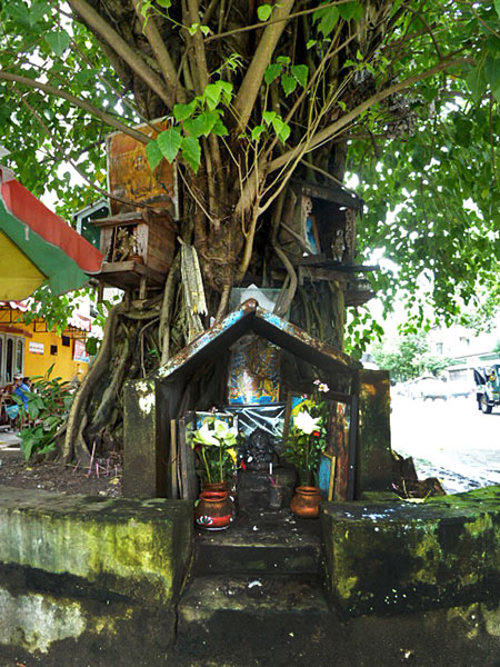 A Buddhist tree shrine in Yangon, Myanmar.