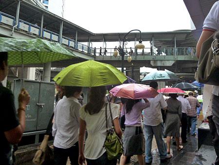 A procession of umbrellas in rainy Bangkok, Thailand.