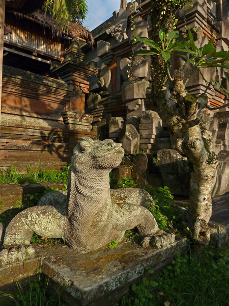 The king of the lizards in Ubud, Bali, Indonesia.