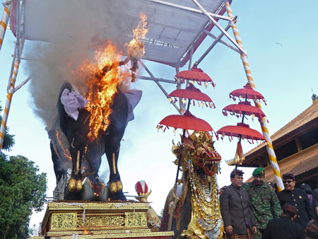 The bull containing the body of Tjokorda Putra Di Armayudha is finally ignited during the royal cremation ceremony at Pura Dalem Puri in Ubud, Bali, Indonesia.