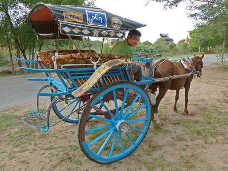 The driver and horsecart who drove me back to Nyaung-U, Myanmar.