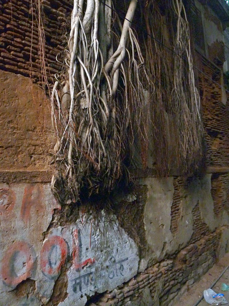 Some serious texture gouges your eyes in the back lanes in Varanasi, India.