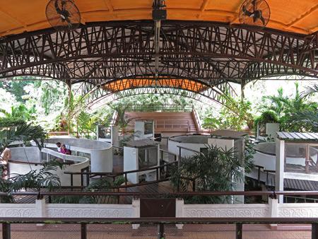 The outdoor serpentarium at the Queen Saovabha Institute Snake Farm in Silom, Bangkok, Thailand.