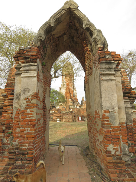 Looking through the entrance at Wat Phra Ram in Ayutthaya, Thailand.