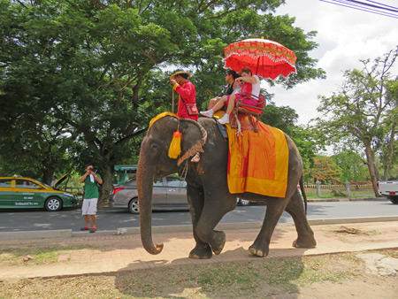 An elephant ride at Wat Phra Ram in Ayutthaya, Thailand.