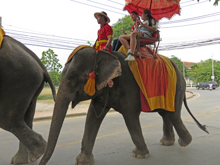 An elephant ride in Ayutthaya, Thailand.