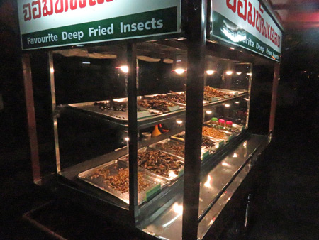 An insect cart at a night market in Phitsanulok, Thailand.