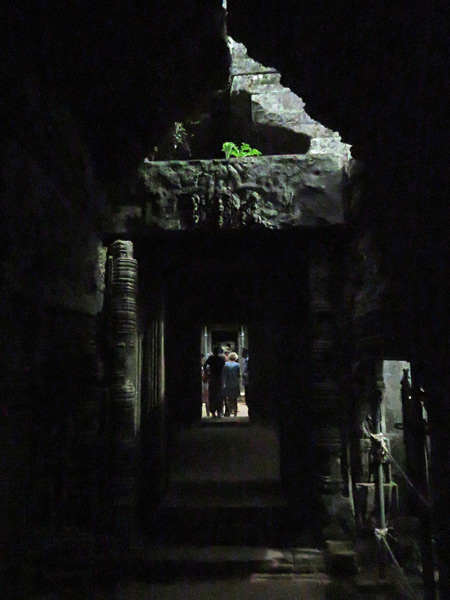 A tunnel vision at Ta Prohm, Angkor in Siem Reap, Cambodia.