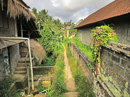 Heading toward the Subak Juwuk Manis rice field in Ubud, Bali, Indonesia.