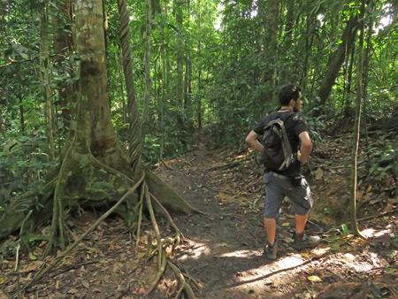 Alex takes a rest break in Bukit Lawang, Sumatra, Indonesia.