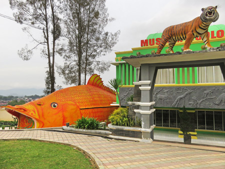 The big one that got away and a tiger at the zoo in Bukittinggi, Sumatra, Indonesia.