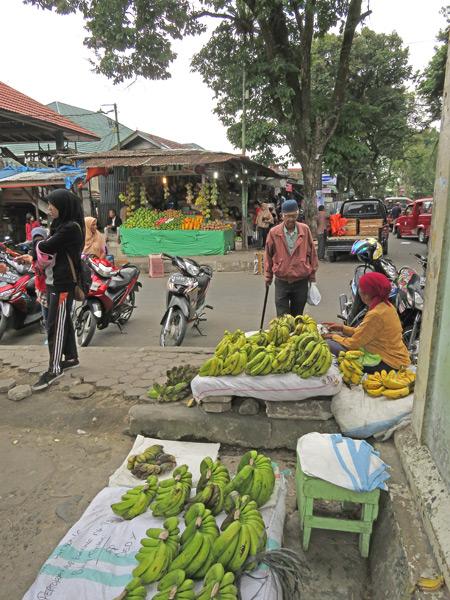 Fruit sellers in Bukittinggi, Sumatra, Indonesia.