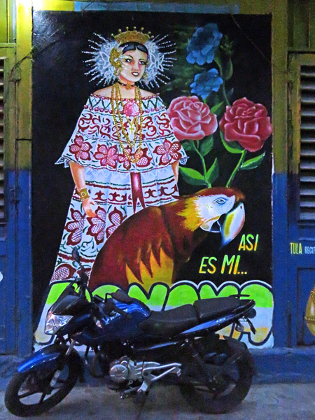 A mural of a Polerra dancer and a parrot in Casco Viejo, Panama City, Panama.