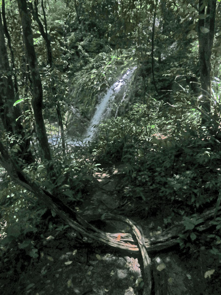 The waterfall at Manuel Antonio National Park, Costa Rica.