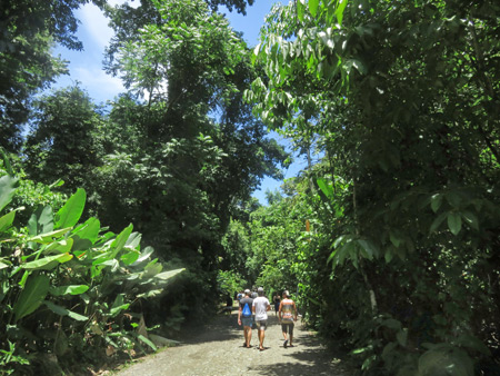 The main trail at Manuel Antonio National Park, Costa Rica.