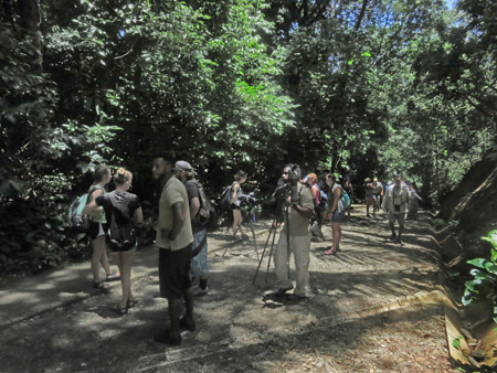A sizable crowd on the main trail at Manuel Antonio National Park, Costa Rica.