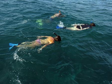 Snorkeling above a school of fish near Caye Caulker, Belize.