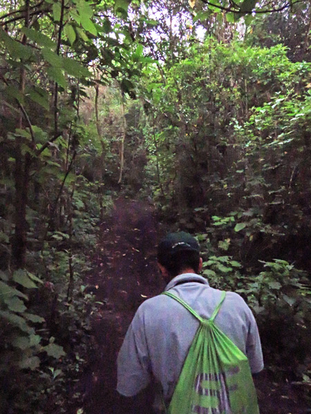 Our guide, Samuel, leads us up a trail to Pacaya volcano in Guatemala.