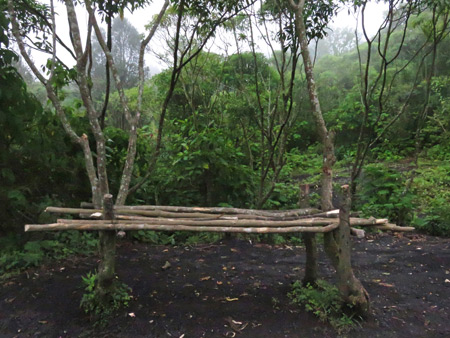 A rustic bench on the side of a trail leading up to Pacaya volcano in Guatemala.