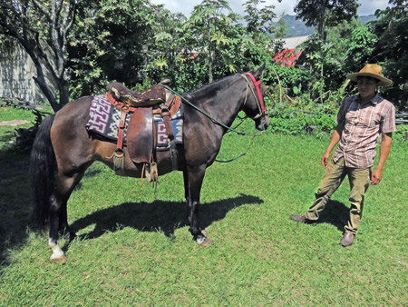 Your horse is ready at the stables of Moises in San Pedro, Lago de Atitlan, Guatemala.