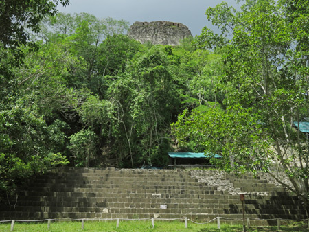 The massive, jungle-covered Temple IV at Tikal, Guatemala.