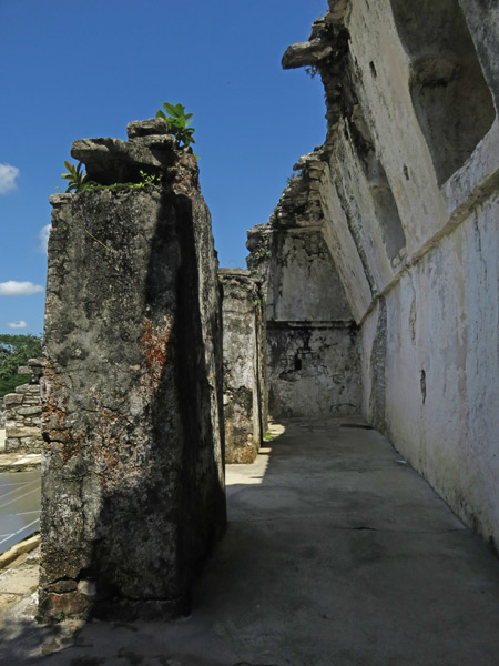 Some crumbling structures on top of El Palacio at the Palenque Ruins, Mexico.