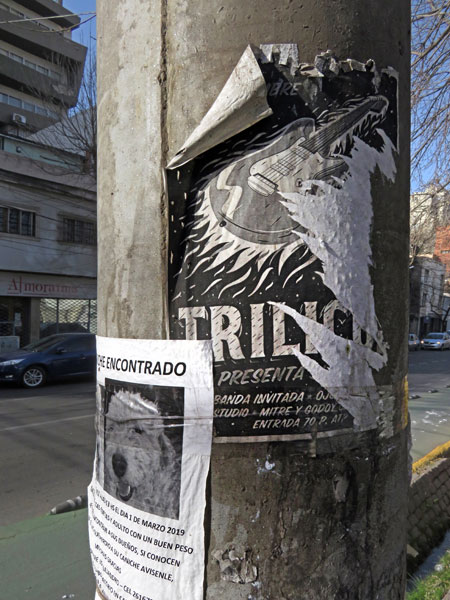 A torn flyer in Mendoza, Argentina.