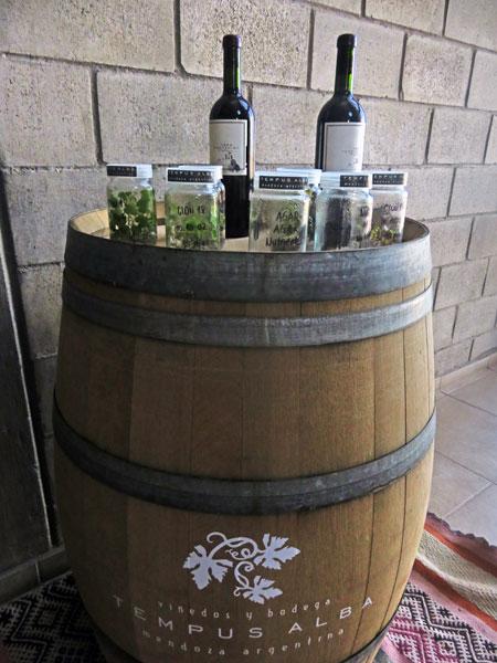 Bottles of wine on display at Bodega Tempus Alba in Maipu, near Mendoza Argentina.
