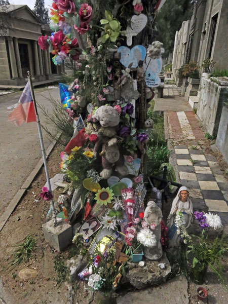 A flowery tribute on a tree at the Cementerio General de Santiago, Chile.