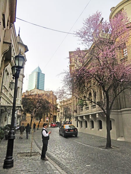 Looking north up Calle Londres in Santiago, Chile.