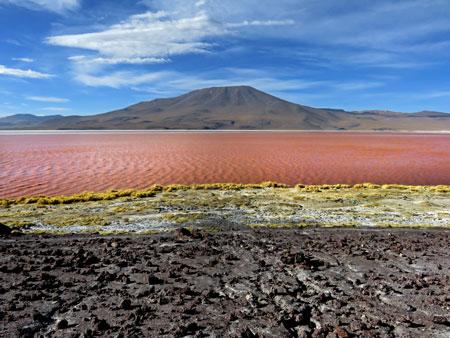 The otherworldly Laguna Colorada in the Reserva Nacional de Fauna Andina Eduardo Avaroa, Bolivia.
