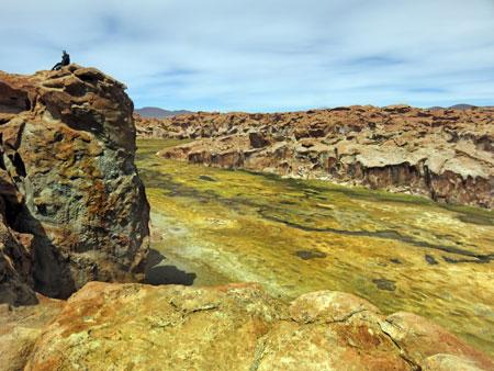 A cliff at the beautiful Laguna Catal in the Reserva Nacional de Fauna Andina Eduardo Avaroa, Bolivia.