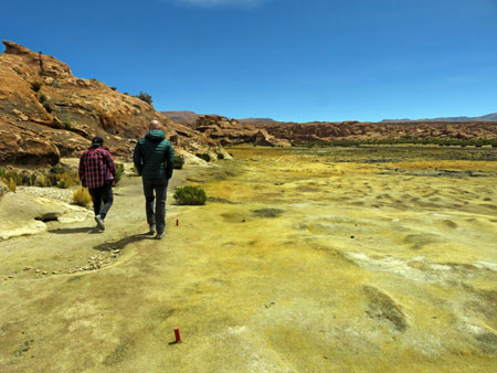 A walk through marshes toward the Laguna Catal in the Reserva Nacional de Fauna Andina Eduardo Avaroa, Bolivia.