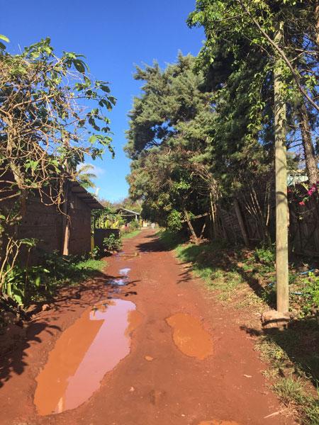 A muddy back lane in Hanga Roa, Rapa Nui, Chile.
