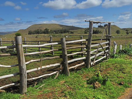 A rustic fence on Rapa Nui, Chile.