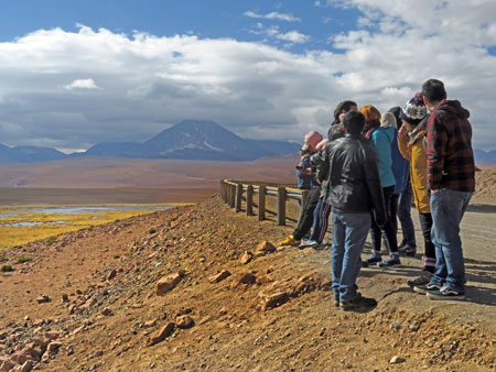 A group of very social bipedal mammals congregates at a scenic overlook in the Andes Mountains, Chile.