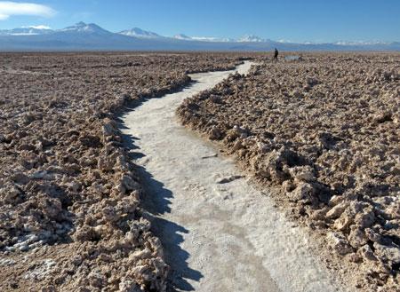 Stay on the path at the Salar de Atacama, Chile.