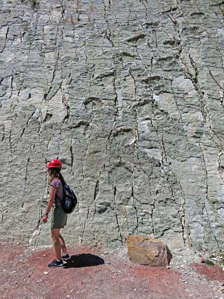 Susanna poses for a photo in front of the wall of dinosaur footprints at Parque Cretacico in Sucre, Bolivia.