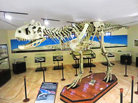 A cast of a Carnotosaurus skeleton at Parque Cretacico in Sucre, Bolivia.