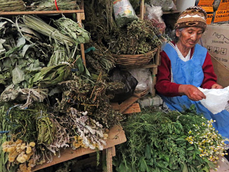 An herb vendor at the Mercado Central in Sucre, Bolivia.
